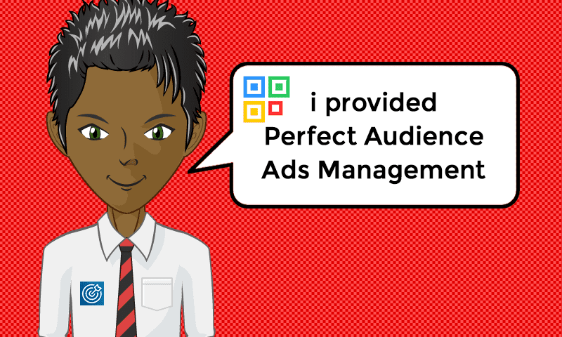 I provided Perfect Audience Ads Management Services - Image - iQRco.de
